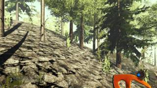 The Forest [ 22] (2 15) PC   RePack от R G Freedom
