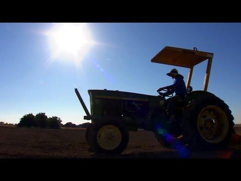 Die Zukunft der Landwirtschaft 1