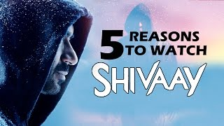Nonton Shivaay  2016    Top 5 Reasons To Watch   Ajay Devgn Film Subtitle Indonesia Streaming Movie Download