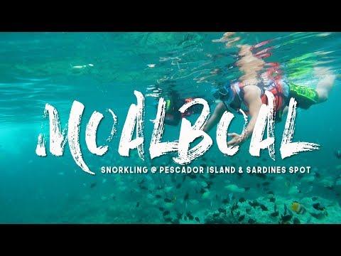 Moalboal, Cebu (Pescador Island & Sardines Spot)
