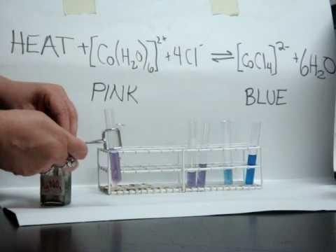 Le Chatelier CoCl2 Equilibrium Demonstration