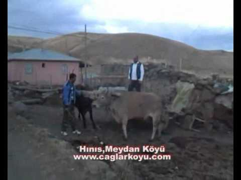 Hınıs/Meydan Köyü