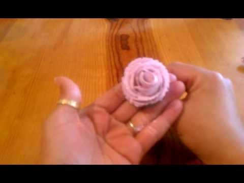 ROSA DE CHANTILLY/ WHIP CREAM ROSE