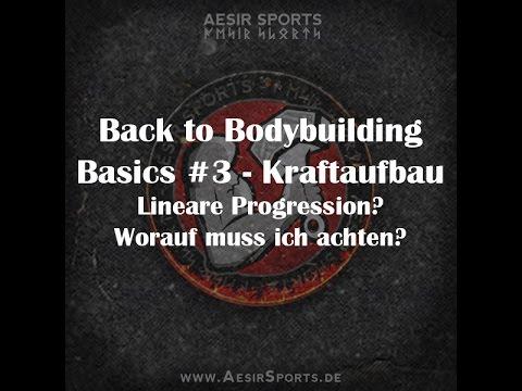 Back to Bodybuilding Basics #3: Kraftaufbau & Lineare Periodisierung