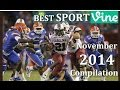 Best Sports Vines Compilation 2014 - November | w/ Song's Name of Beat Drop - NEW Vine Compilation ✔