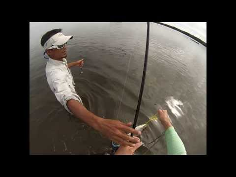 Hot Trout and Redfish bite – FL Nov 2013