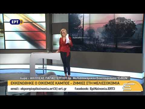 Αχιλλέας Παπαστεργίου – Πρόεδρος Μελισσοκομικού Συνεταιρισμού «Σίθων»  | 25/10/2018 | ΕΡΤ