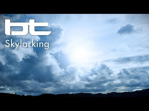 BT - Skylarking
