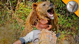 Download Youtube: GRIZZLY BEAR ATTACK!