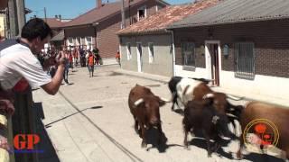 Villanueva de Duero Spain  city photo : San Antonio 2011 Villanueva de Duero Domingo (mañana)