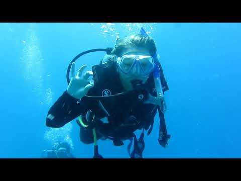 Scuba Diving the Great Barrier Reef - Port Douglas