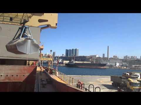 Discharging grain cargo from ship