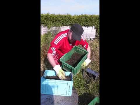 wurmkompostierung im größeren stil
