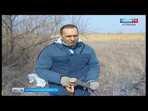 О фактах неиспользования земель сельскохозяйственного назначения в Астраханской области