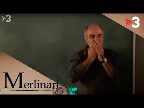 Merlinari - El comiat