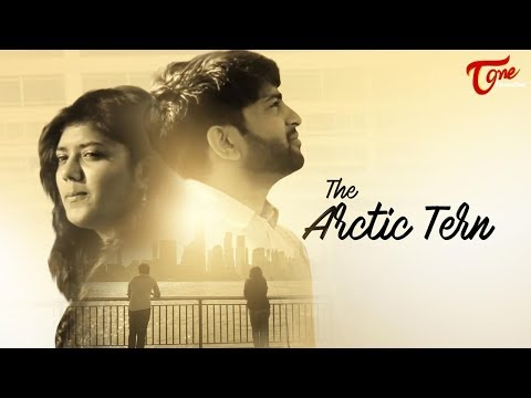 The Arctic Tern | Latest Telugu Short Film 2017 | By Varun Nalluri