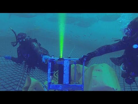 Überfischung? Europas Unterwasser-Kamera für die Qu ...