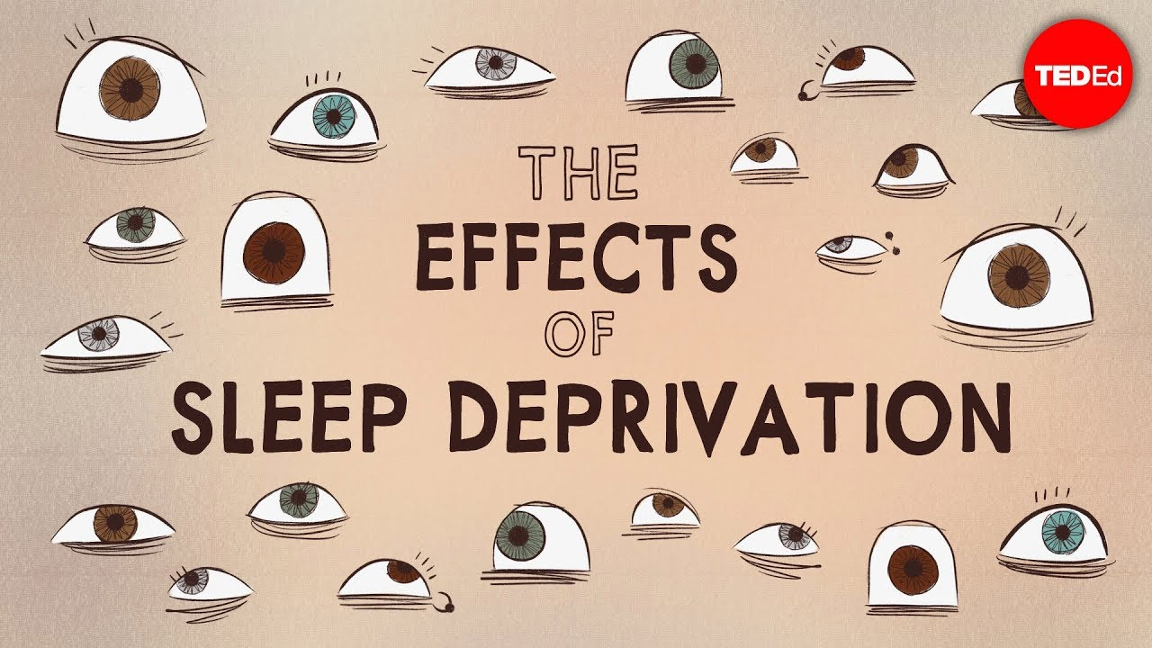 What would happen if you didn't sleep? (TED-Ed)