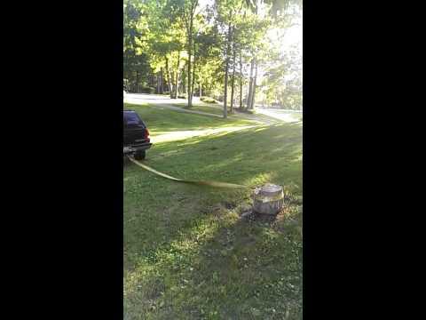نهاية كارثية لسائق حاول خلع جذع شجرة بسيارته