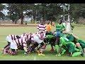 Eaglesvale vs Lomagundi : 1st XV Rugby 2017 : Rising Stars