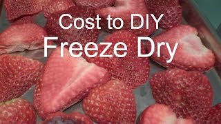 Freeze Dried Strawberries - and costs - in a Harvest Right Home Freeze Dryer