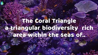 A video from Waterpedia on CORAL TRIANGLE DAY 2017. Read more at https://en.waterpedia.wiki/index.php/Coral_Triangle_Day Coral Triangle Day, also ...