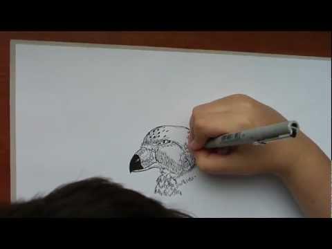 10歲繪畫神童~只用一支簽字筆就能給你全世界!
