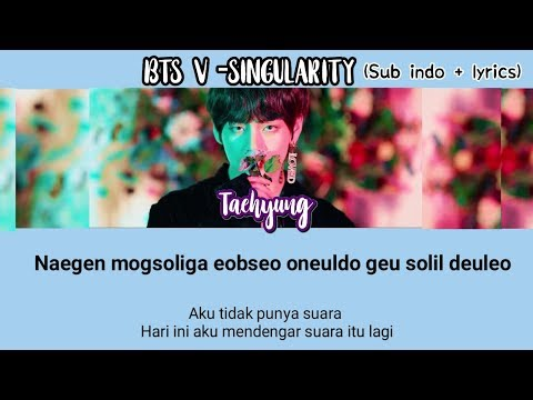 BTS - SINGULARITY (INDO SUB+LYRICS)