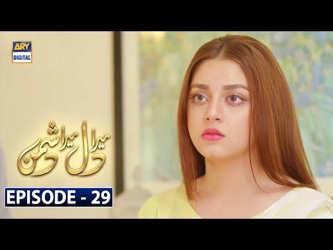 Mera Dil Mera Dushman Episode 29 | 13th April 2020 | ARY Digital Drama [Subtitle Eng]