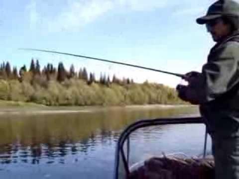 ловля язя на реке урал