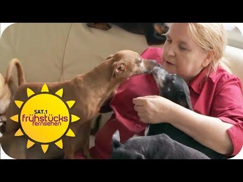 Die Hunderetterin der Eifel: Ohne sie hätten die Hund ...