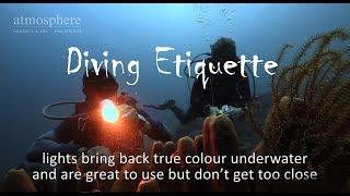 Diver Etiquette
