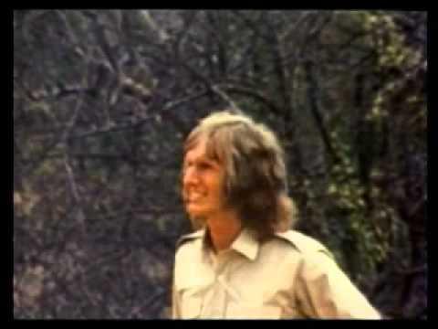 Встреча со львом (video)
