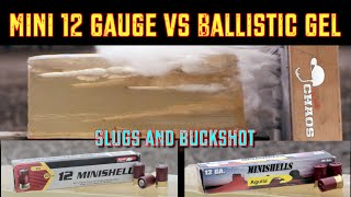 """This has been requested more times than just about any other type of ammo. The mini 12 gauge slugs and buckshot vs ballistics gel! ** You can now support I'm with Chaos by visiting http://Patreon.com/ImwithChaos **-------------------------------------------------------------------------------------Check out ImwithChaos.com for more reviews and videos!I'm with Chaos is all about bringing you the most unbiased gun and gear reviews possible. I am a gun geek to the core and I love everything from machine guns to hunting shotguns to ammunition to accessories. Sharing as much knowledge as I can is the primary objective. If you aren't having fun while shooting, you aren't doing it right! Prepare to sit back and enjoy the show. ----------------------------------------------------------------------------------------Please Like, Share and Subscribe to get updates and see videos as soon as they come out! You can also find me on:Facebook.com/Chaos311ClarityInstagram: @Chaos311ClarityTwitter: @Chaos311ClarityMusic: """"Noise Attack"""" Kevin MacLeod (incompetech.com)Licensed under Creative Commons: By Attribution 3.0http://creativecommons.org/licenses/by/3.0/"""