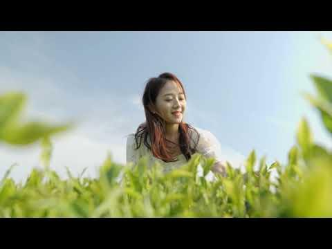 수망다원 홍보영상