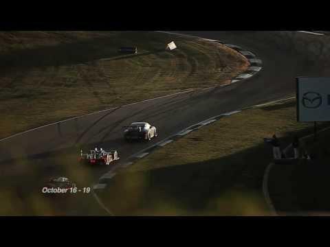 Petit Le Mans 2013: Get ready!