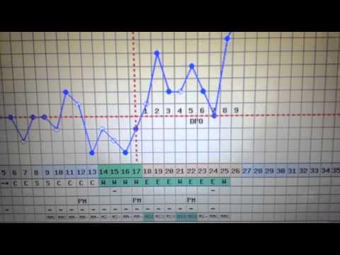 TTC-BBT CHART CD 26- 3/9 DPO