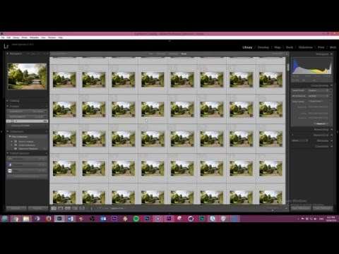 Copy paste adjustments to MULTIPLE photos in Lightroom