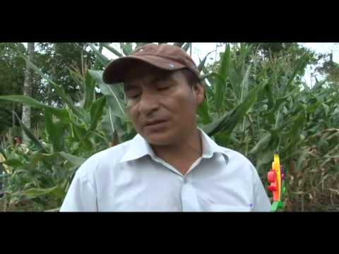 AGRICULTORES DE CASCALES RECIBEN HERRAMIENTAS PARA MEJORAR EL TRABAJO AGRÍCOLA