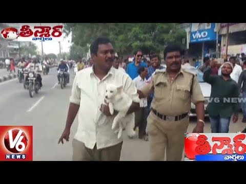 Man Stops Bus After Conductor Blocks His Dog | Siricilla | Teenmaar News