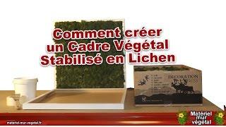 Comment créer un cadre végétal stabilisé en lichen