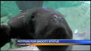 Snooty petition