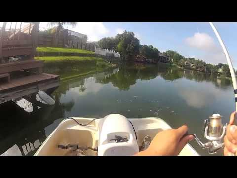 bass fishing from a paddle boat!