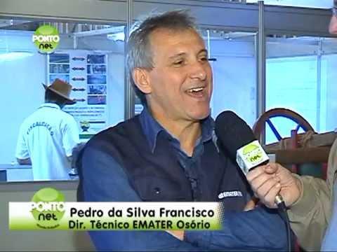 Segunda parte da cobertura do 31º Rodeio Crioulo Internacional de Osório, ocorrido entre os dias 25 e 29 de maio de 2011 no Parque Jorge Dariva, localizado às margens da E-RS 30 em Osório.