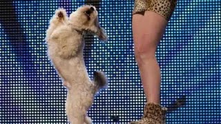Download Video Ashleigh and Pudsey - Britain's Got Talent 2012 audition - UK version MP3 3GP MP4