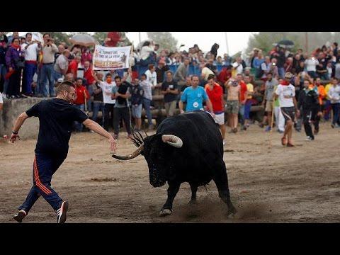 Ισπανία: Επιβίωσε ο ταύρος στο φεστιβάλ στο Τορντεσίγιας