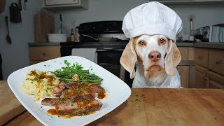 Chef Dog Cooks Steak Dinner for Friends: Funny Dog Maymo by Maymo