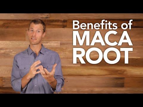 Benefits of Maca Root