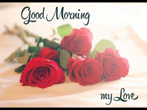 good morning love message,whatsapp video,romantic greetings