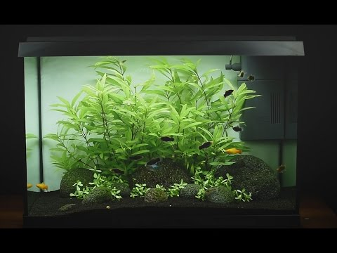Juwel Primo 70 Led aquarium